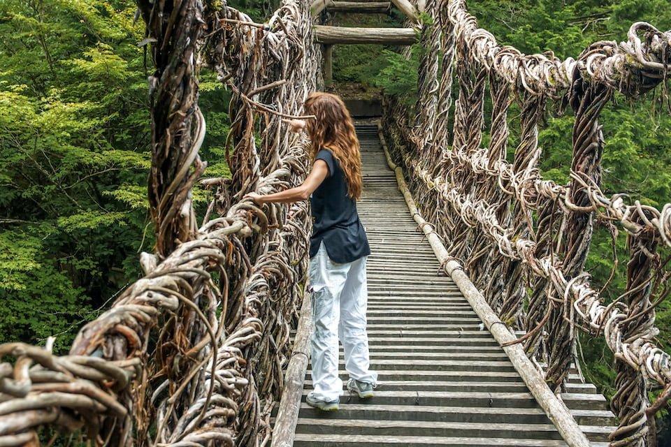 Ponte di liane